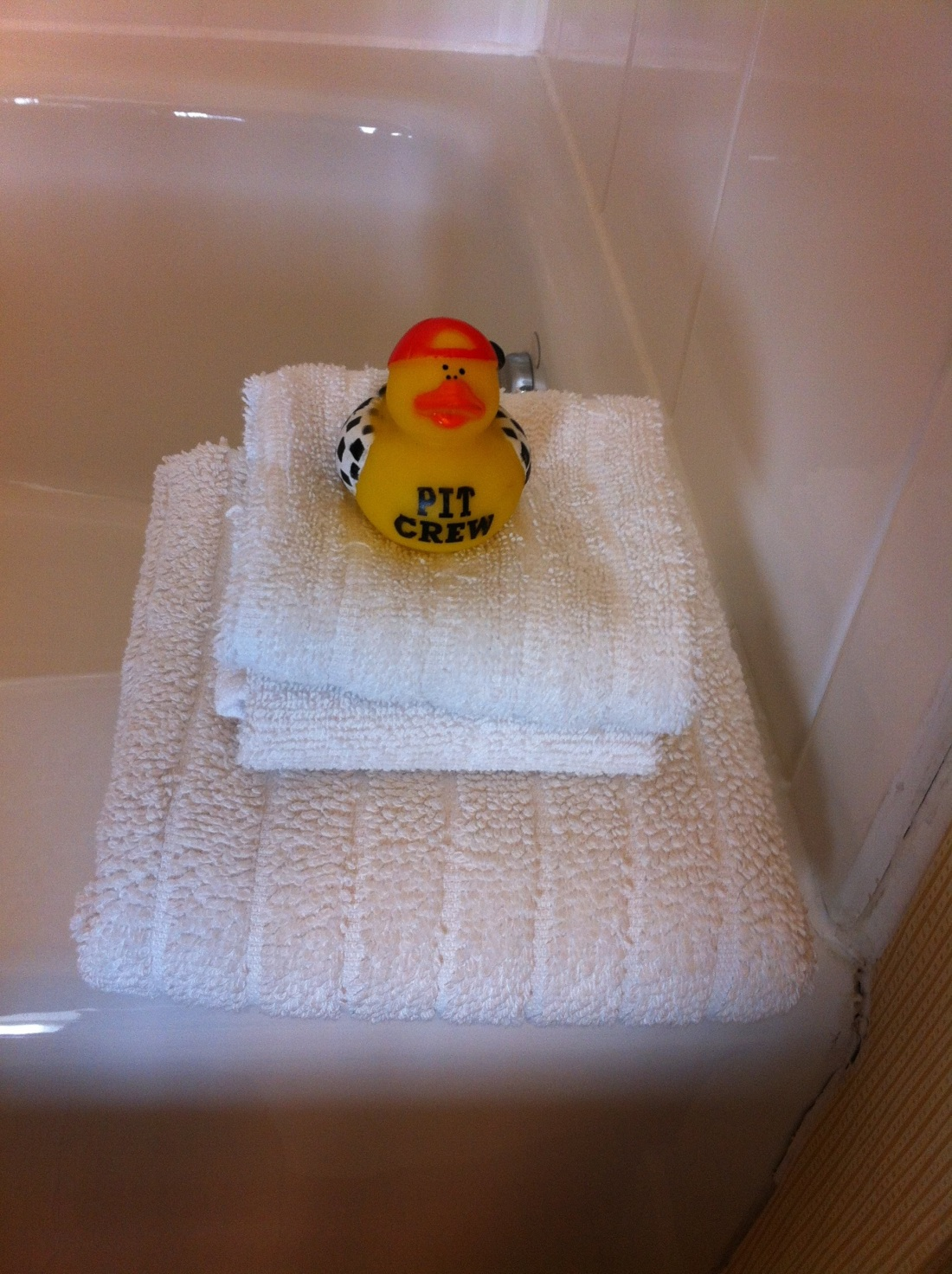Rubber Ducky Buddha of Joliet